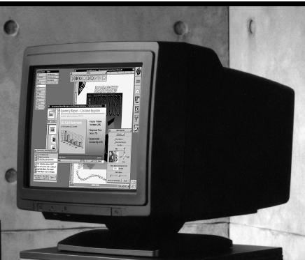 17-inch MegaPixel Color Display